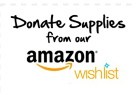 Our Amazon Wish List
